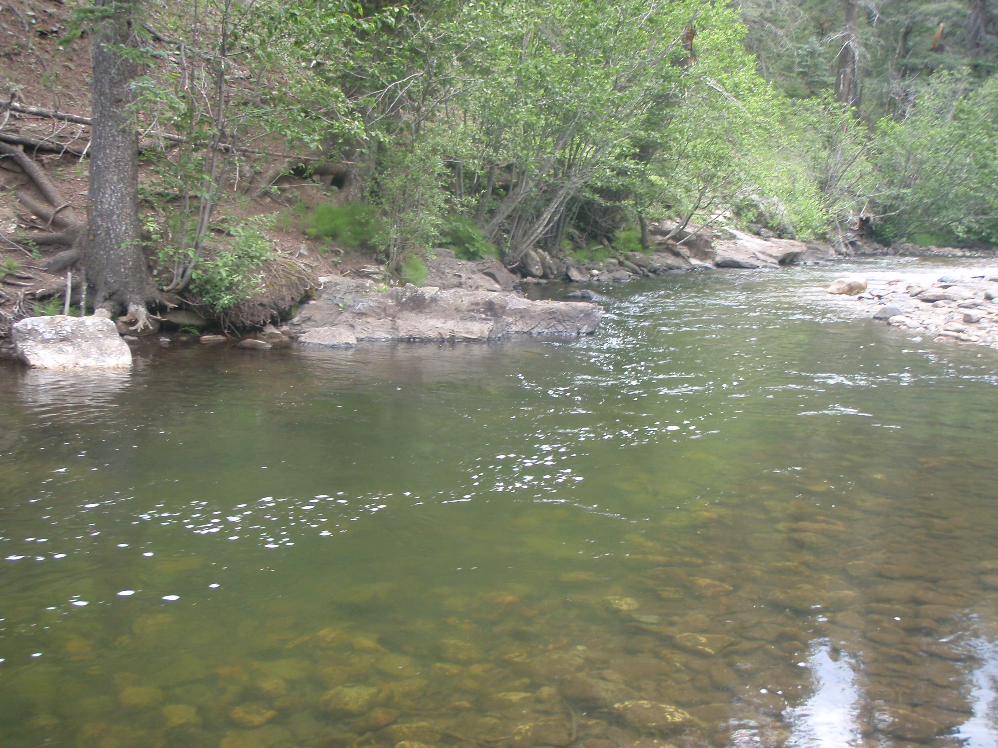 Rivertop rambles adventures in fly fishing hiking and for Pecos river fishing