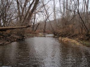 naples creek