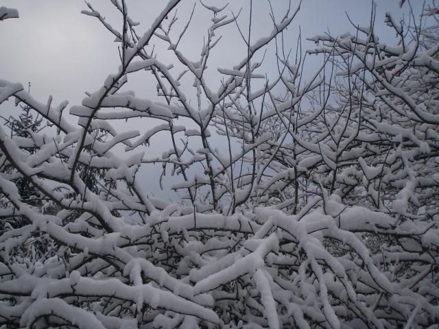 heh winter