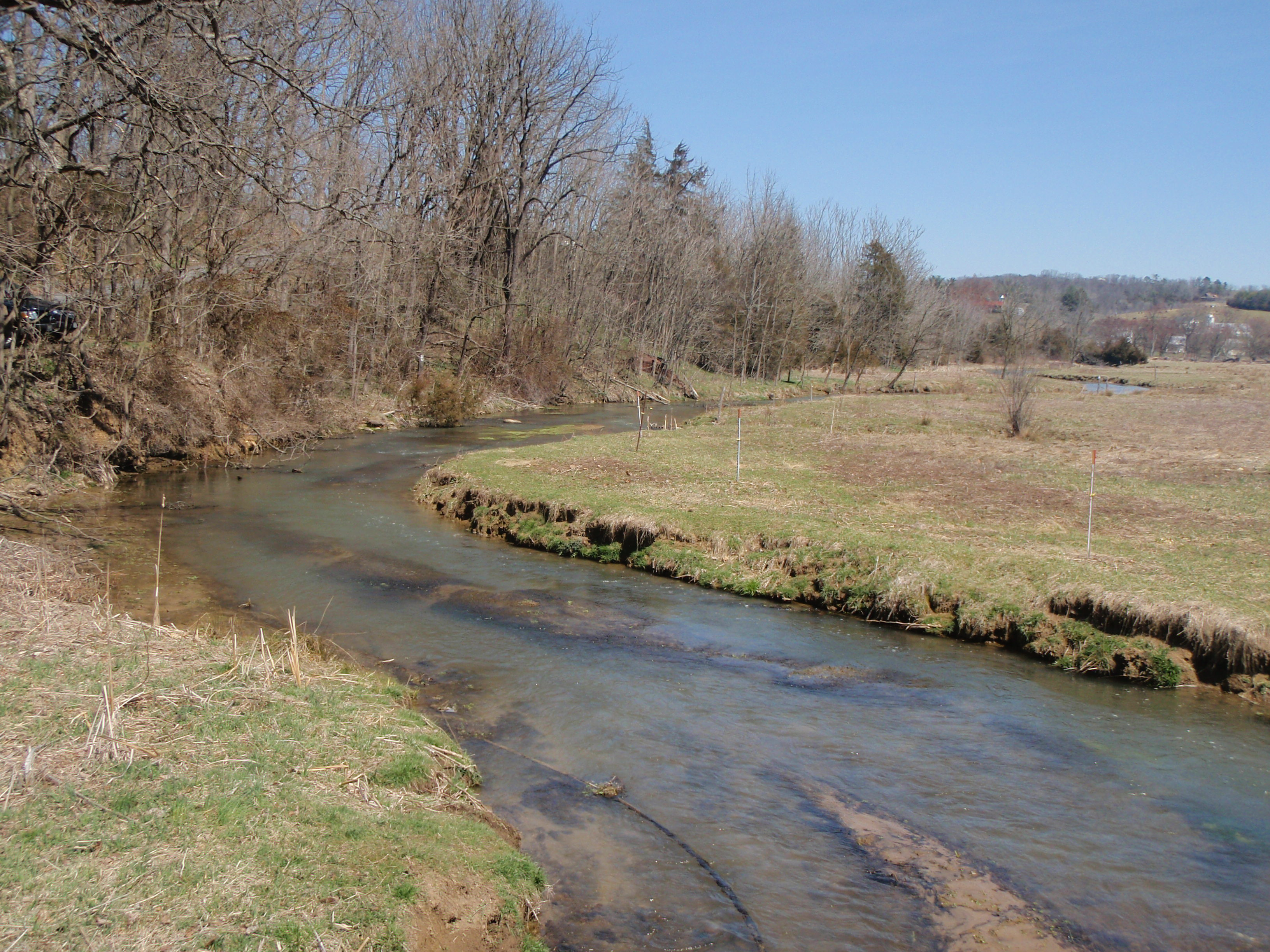 Spring journal mossy creek rivertop rambles for Mossy creek fly fishing