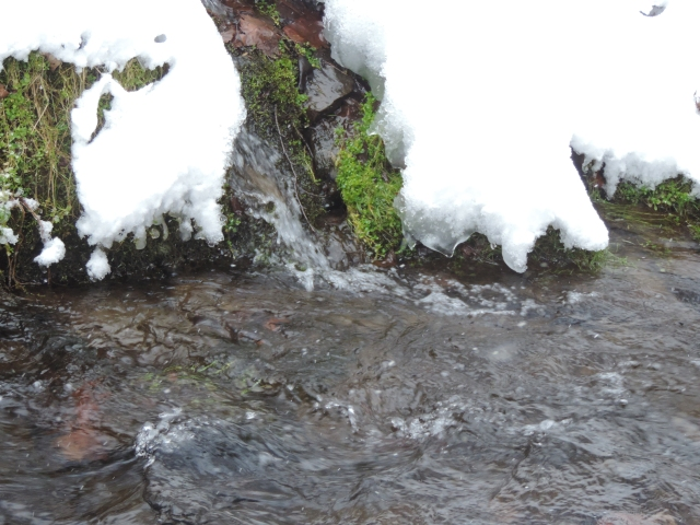 rushing with snow-melt,