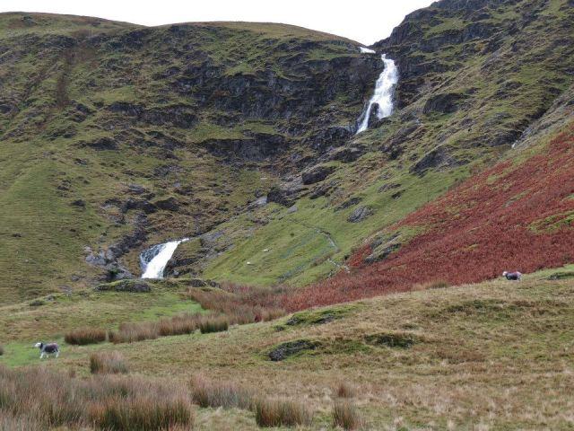 heath and falls