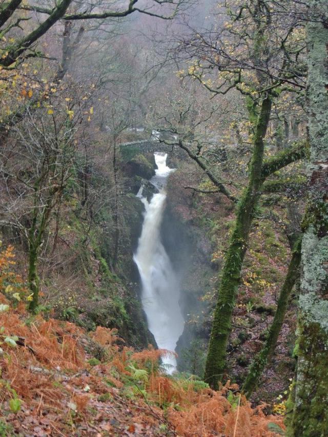 falls with bridge