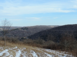 my Greenwood hills