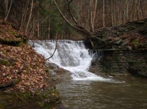 falls on Tannery Creek