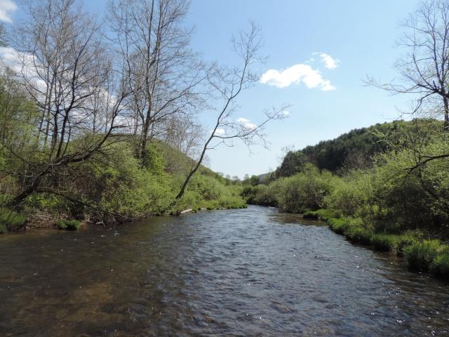upper Kettle Creek