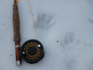 fisher tracks & Ross reel