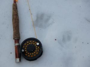 fisher tracks & Ross reel