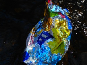 the wild stream litter