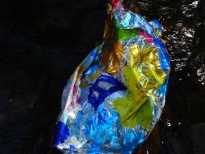 the wild stream litter